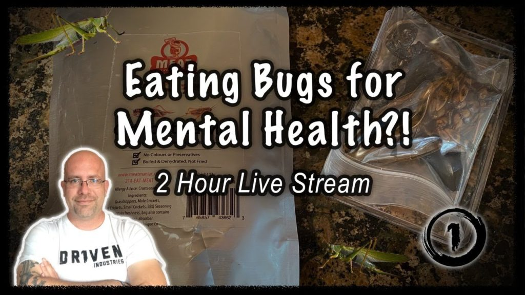 Eating Bugs and Bringing Awareness to Mental Health Q&A!